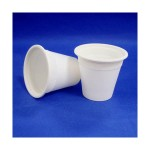 EB-93952 6oz Biodegradable Cup